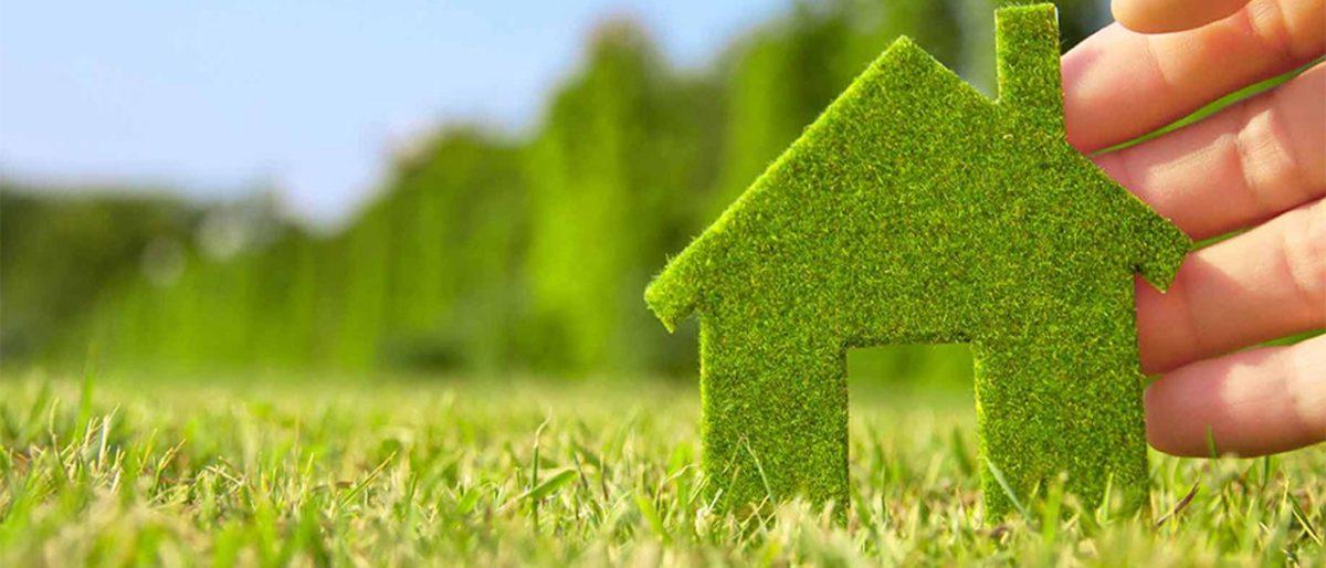 Permalink to: Zelenilo i Čistoća